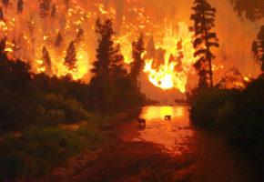 Τι Είναι η Παγκόσμια Ημέρα Πυρομανίας