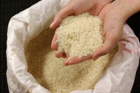hands-rice-033