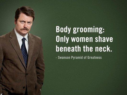 ron swanson body grooming