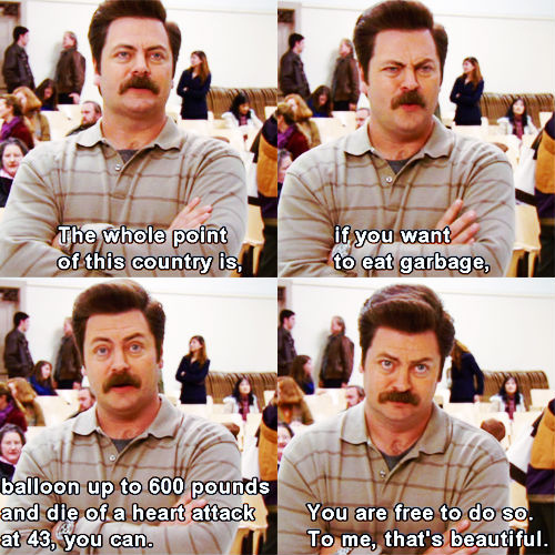 ron swanson the whole point