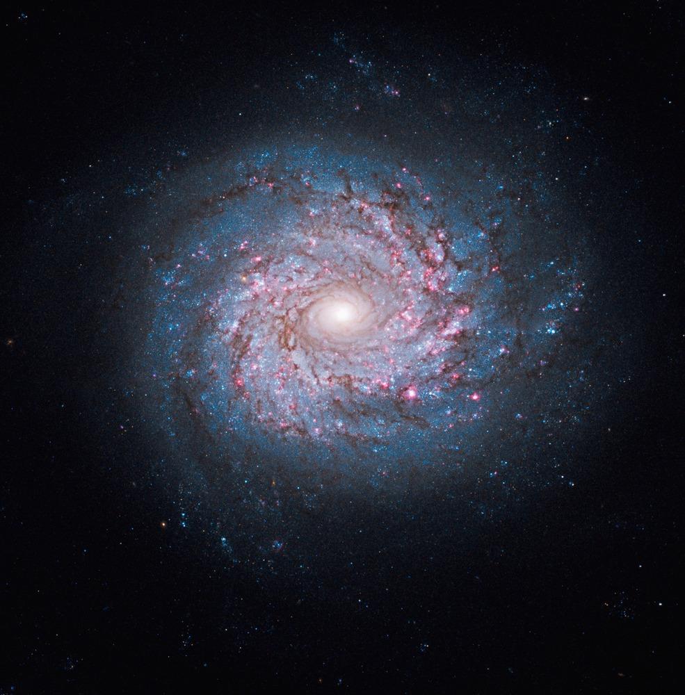 Συρραφή λήψεων από 3 κάμερες του Hubble που απεικονίζει το γαλαξία NGC 3982