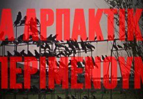 """Απογευματινό LSD: το ΠΑΜΕ φτιάχνει αγωνιστικό σποτάκι με σκηνές από τα """"Πουλιά"""" του Χίτσκοκ (VIDEO)"""