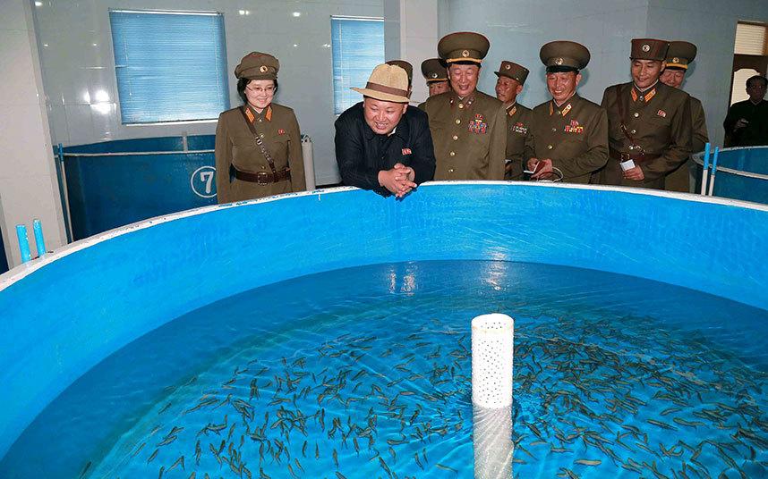 Kim-Jong-Un-Salmon_3316208k