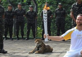 Η αμήχανη στιγμή που στρατιώτης στη Βραζιλία σκοτώνει τζάγκουαρ-μασκότ σε λαμπαδηδρομία