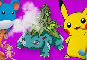 Έχουν ήδη αργήσει να φτιάξουν ένα PokemonGo που αντί για πόκεμον θα κυνηγάς χόρτο