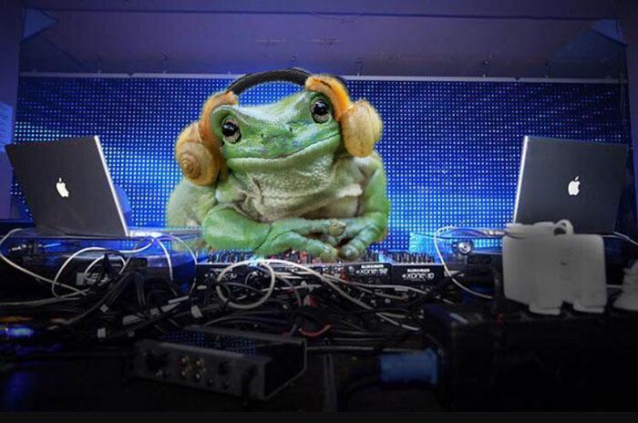princess-leia-frog-snails-photoshop-battle-16-5839a9c4220a1__700