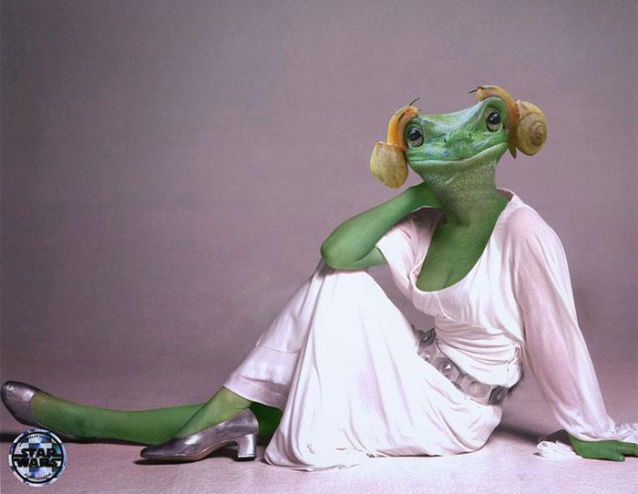 princess-leia-frog-snails-photoshop-battle-3-5839a9ab6da5a__700