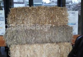 Τέξας της Θεσσαλίας: Κτηνοτρόφοι στη Λάρισα απέκλεισαν με μπάλες άχυρου την είσοδο της περιφέρειας (VIDEO)